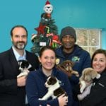 Attorney Brooks West and KCHA team members in front of Christmas tree holding puppies available for adoption