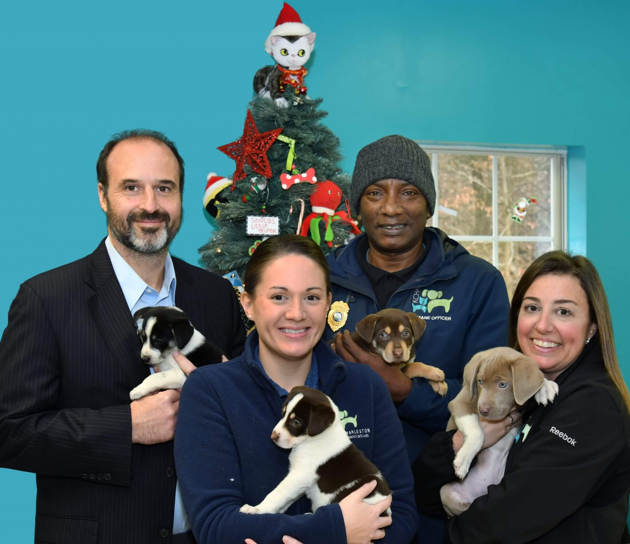 Free Dog Adoptions For Christmas West Law Firm Is Sponsoring The