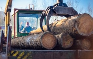 Worker picking up logs in WV with heavy equipment