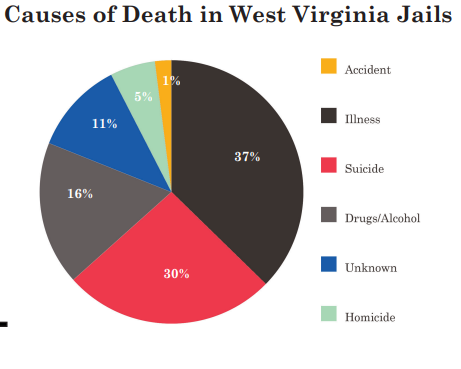 Pie graph of causes of death in WV Jails